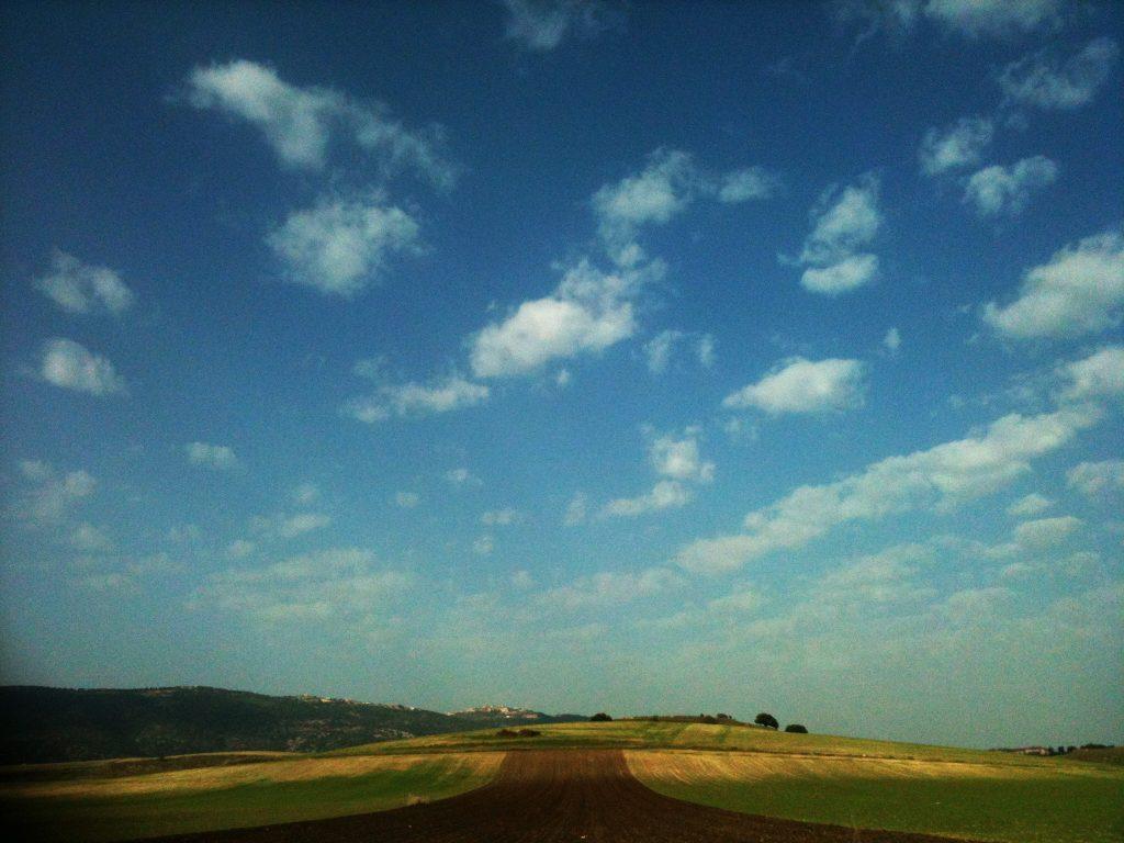 עמק יזרעאל - צילום דנה לו-יון גלעד